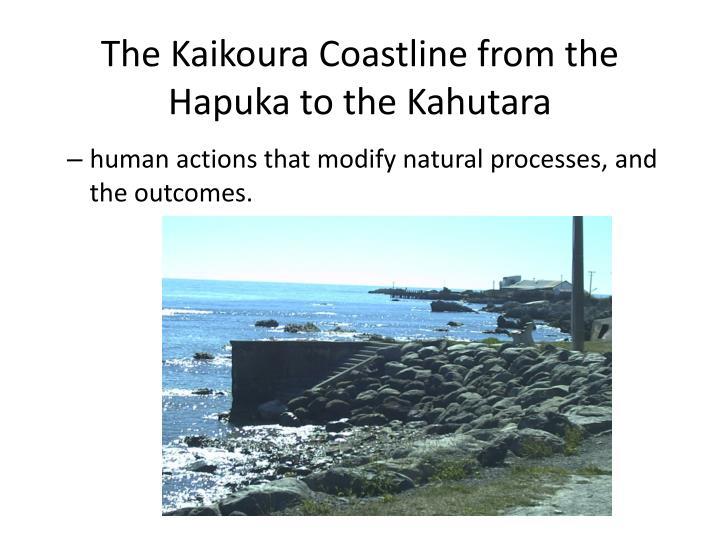 The Kaikoura Coastline from the