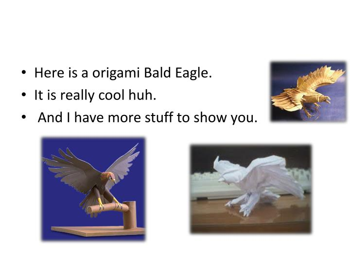 Here is a origami Bald Eagle.