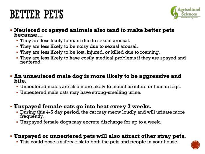 Better Pets