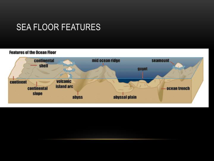 Sea Floor Features