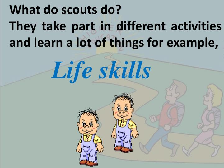 What do scouts do?