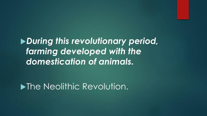 During this revolutionary period, farming developed with the domestication of animals.