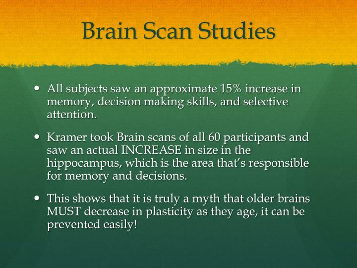 Brain Scan Studies