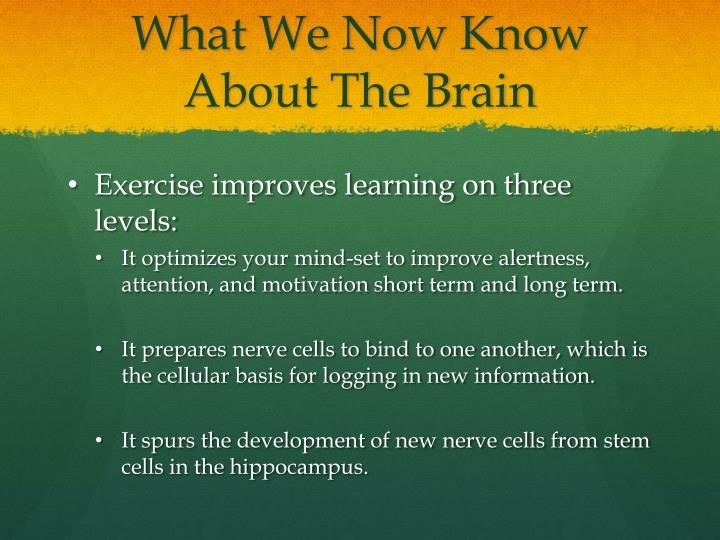 What We Now Know About The Brain
