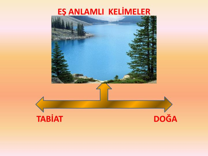 EŞ ANLAMLI  KELİMELER