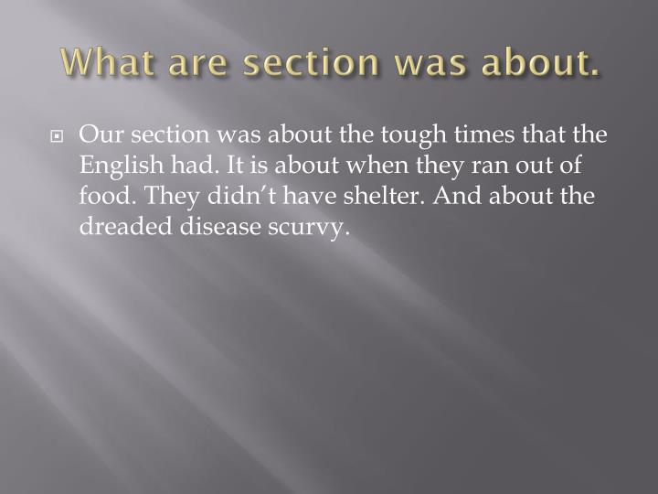 What are section was about.