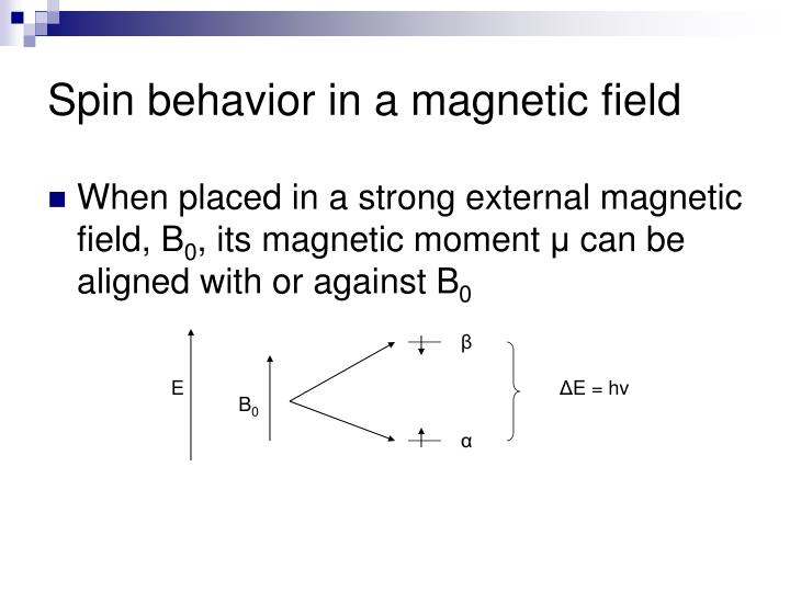 Spin behavior in a magnetic field