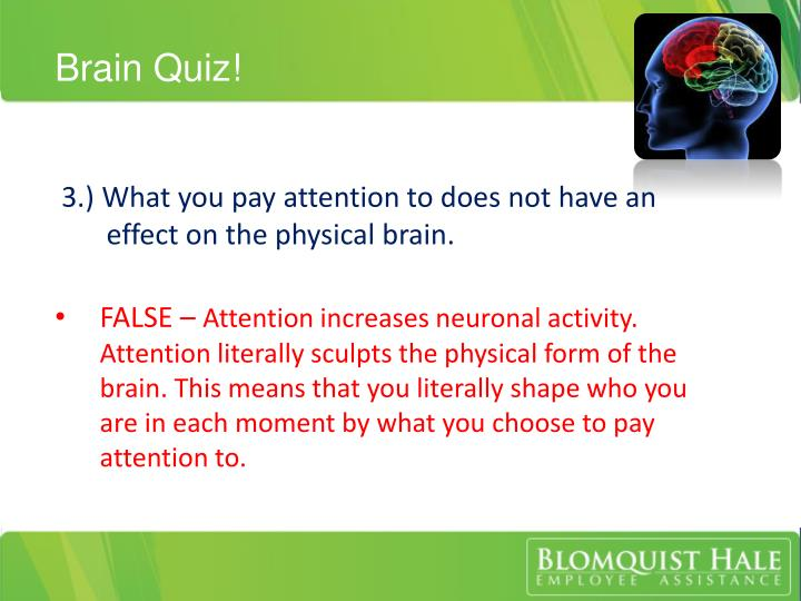 Brain Quiz!