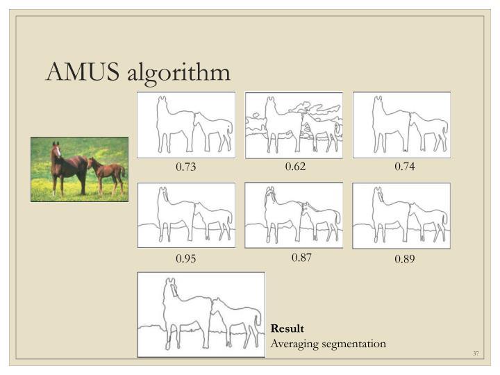 AMUS algorithm