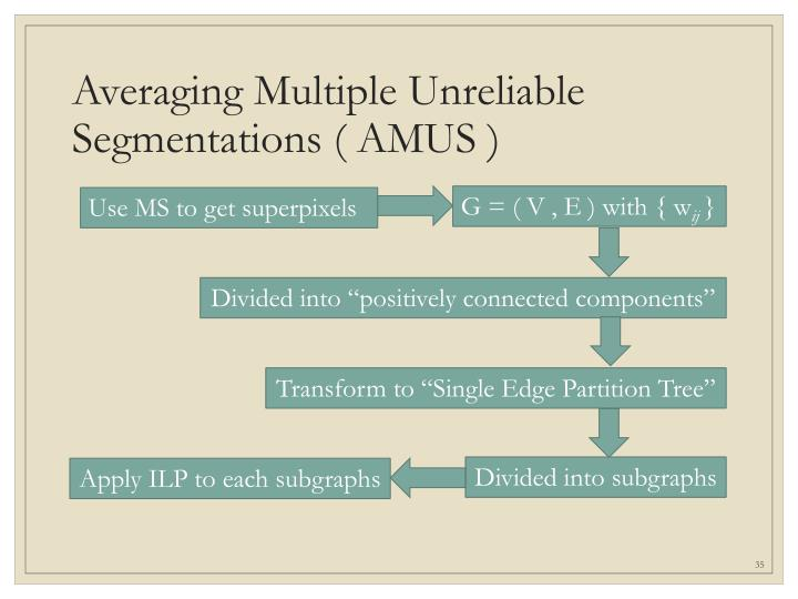 Averaging Multiple Unreliable Segmentations ( AMUS