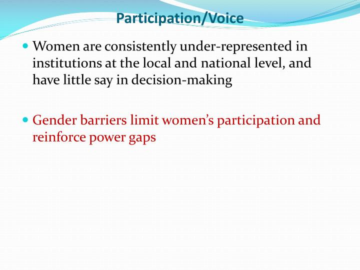Participation/Voice