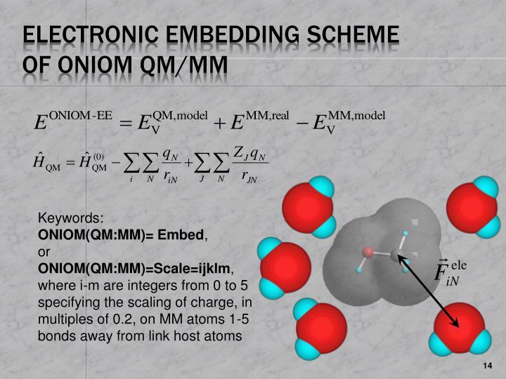 Electronic Embedding Scheme