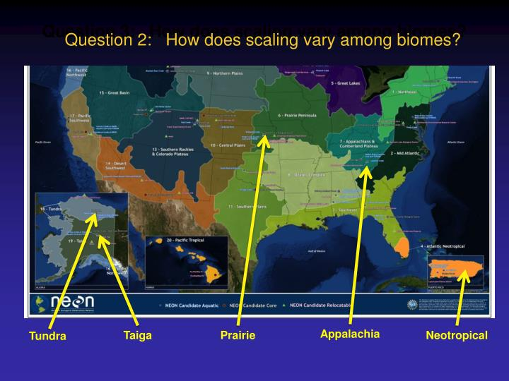 Question 3:   How does scaling vary among biomes?