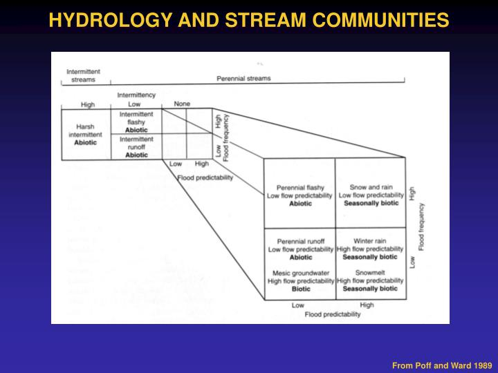 HYDROLOGY AND STREAM COMMUNITIES