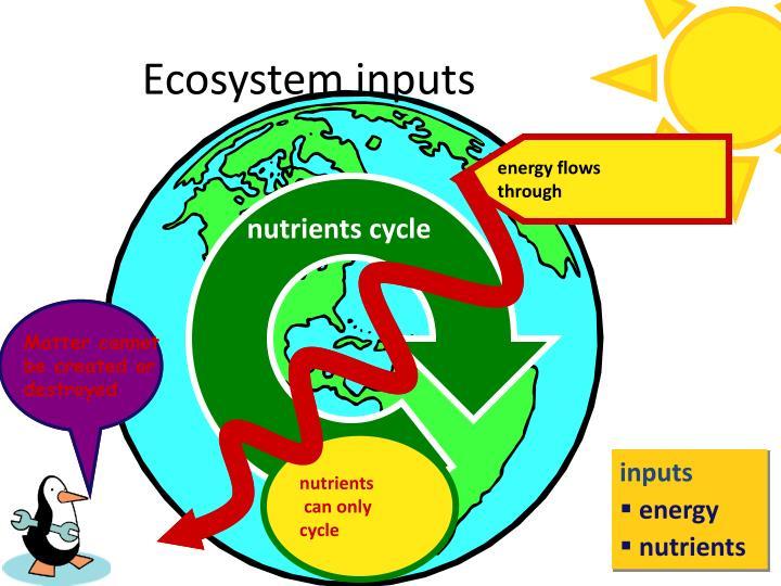 Ecosystem inputs