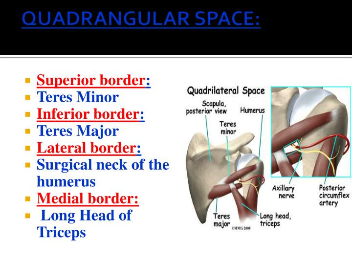 QUADRANGULAR SPACE: