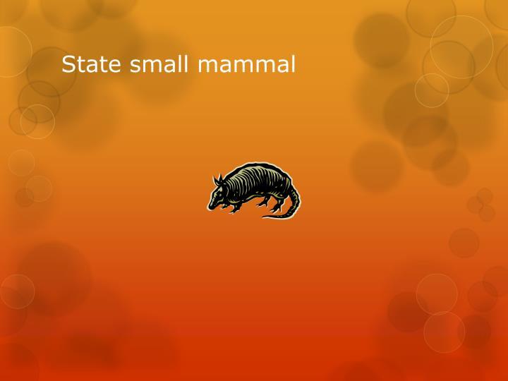 State small mammal