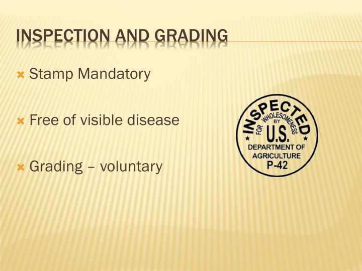 Stamp Mandatory