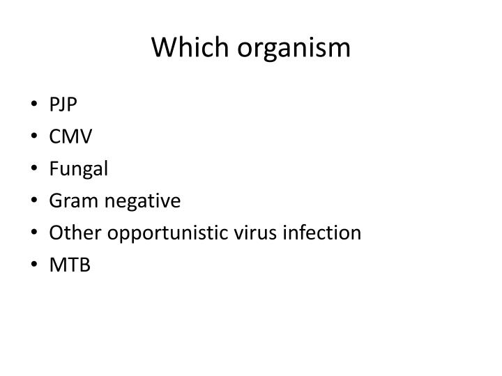 Which organism