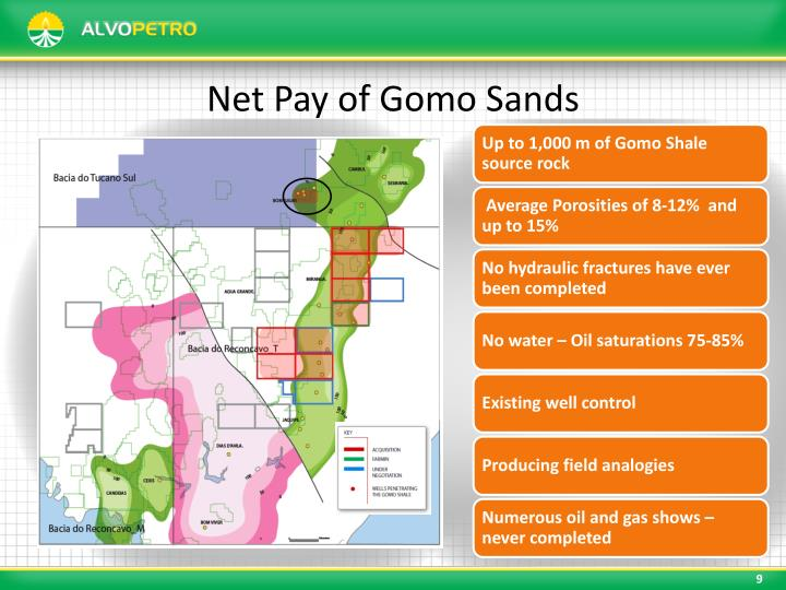 Net Pay of Gomo Sands