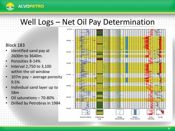 Well Logs – Net Oil Pay Determination