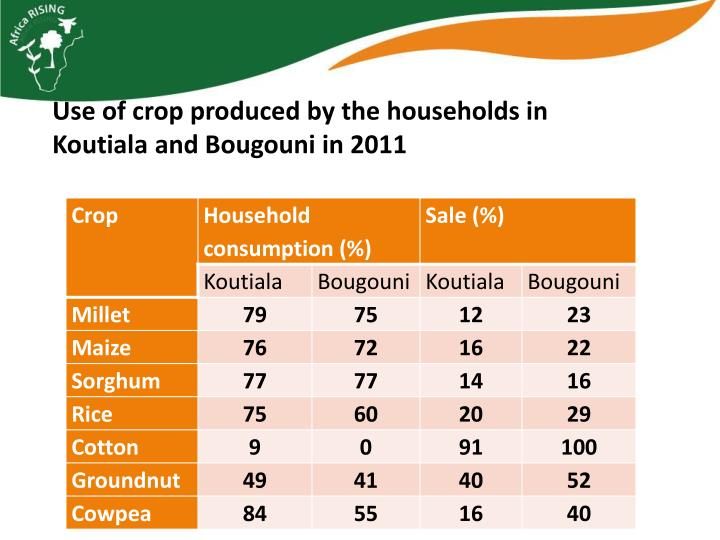 Use of crop produced by the households in