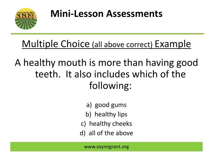 Mini-Lesson Assessments