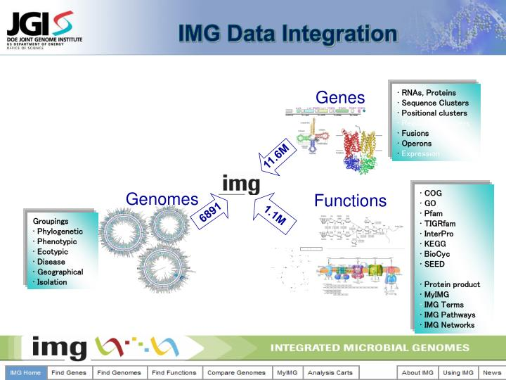 IMG Data Integration