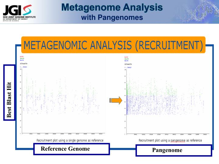 Metagenome