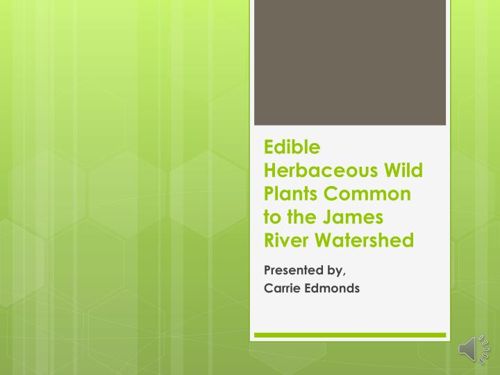 Edible Herbaceous Wild Plants Common to the James River Watershed
