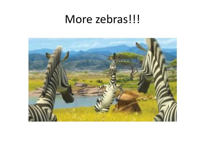 More zebras!!!