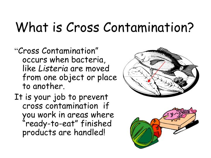 What is Cross Contamination?