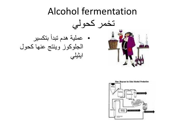 Alcohol fermentation