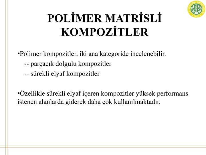 POLİMER MATRİSLİ