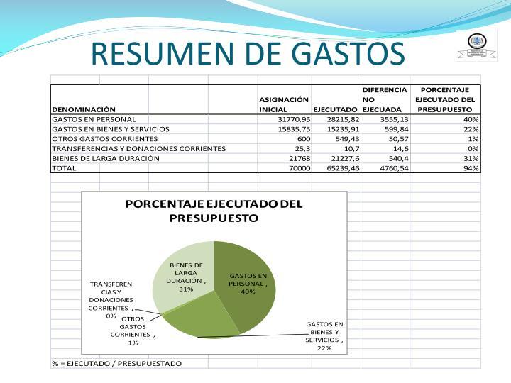 RESUMEN DE GASTOS