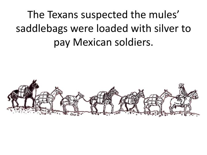 The texans suspected the mules saddlebags were loaded with silver to pay mexican soldiers