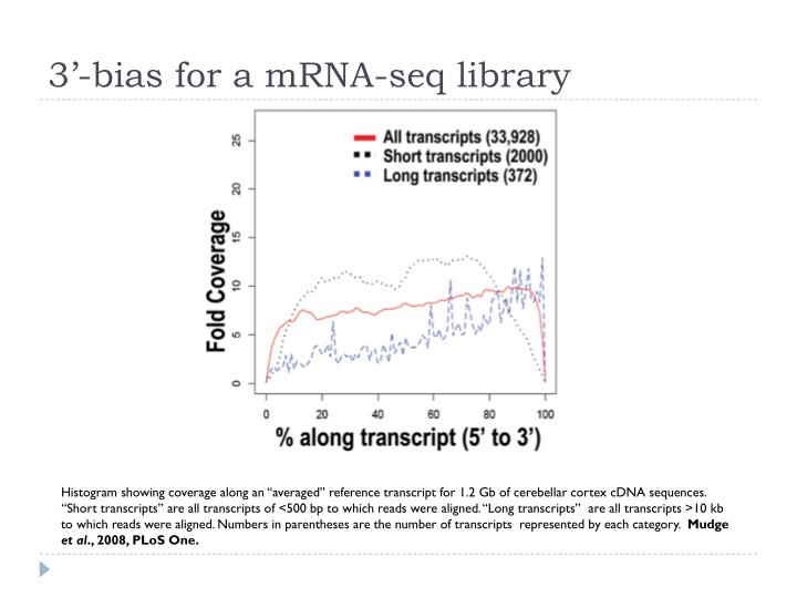 3'-bias for a mRNA-seq library