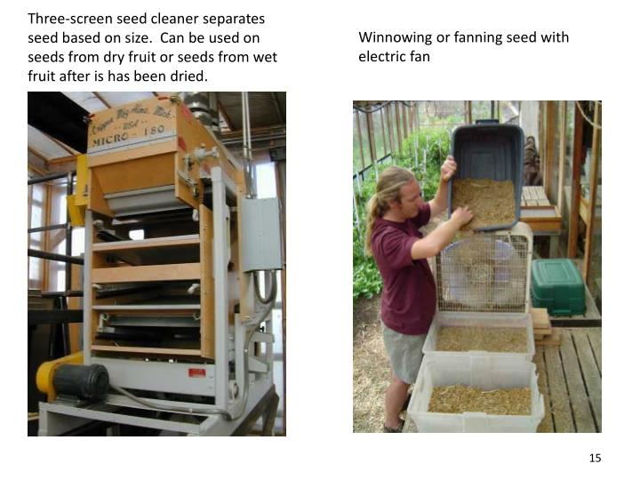 Three-screen seed cleaner separates seed based on size.  Can be used on seeds from dry fruit or seeds from wet fruit after is has been dried.