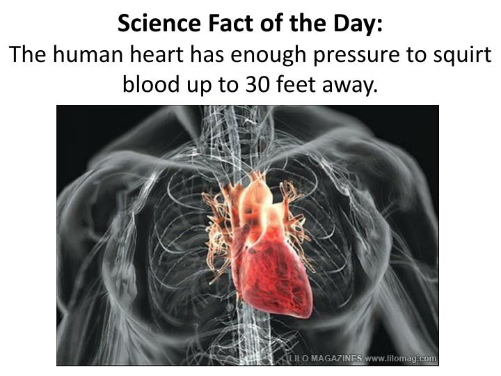 Science Fact of the Day: