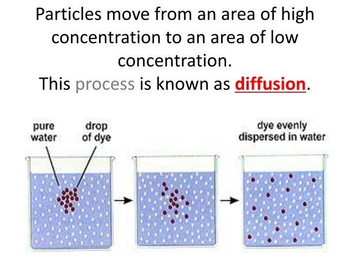 Particles move from an area of high concentration to an area of low concentration.