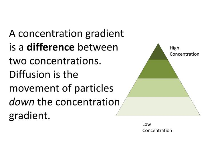 A concentration gradient is a