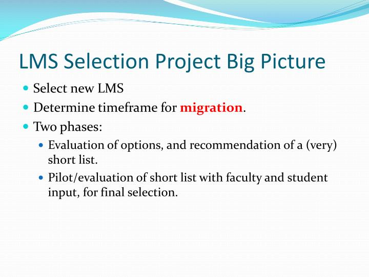 LMS Selection Project Big Picture