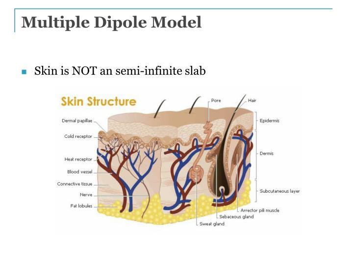 Multiple Dipole Model