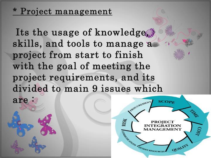 * Project management