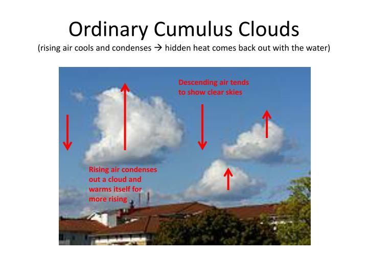 Ordinary Cumulus Clouds