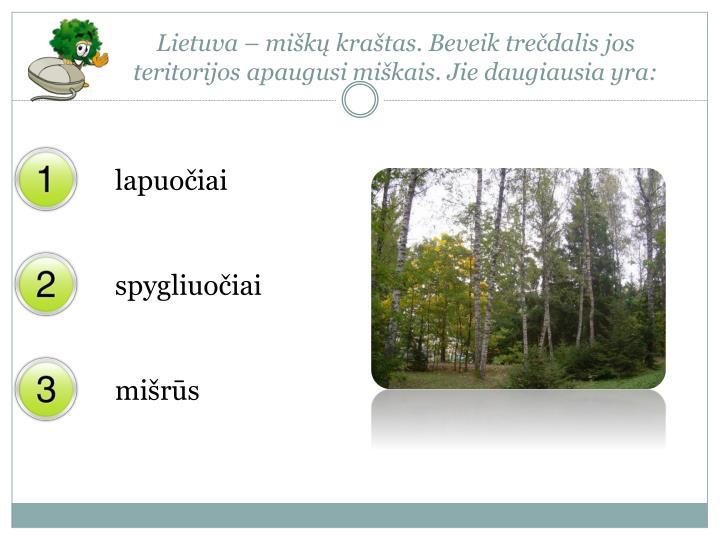 Lietuva – miškų kraštas. Beveik trečdalis jos teritorijos