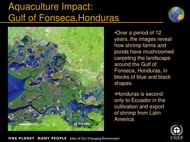Aquaculture Impact: