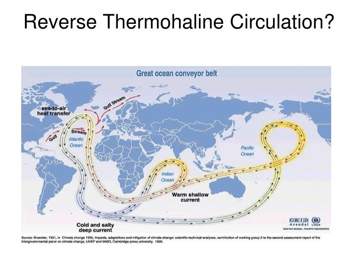 Reverse Thermohaline Circulation?