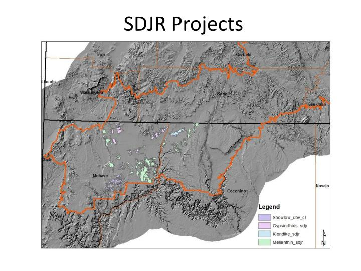 SDJR Projects
