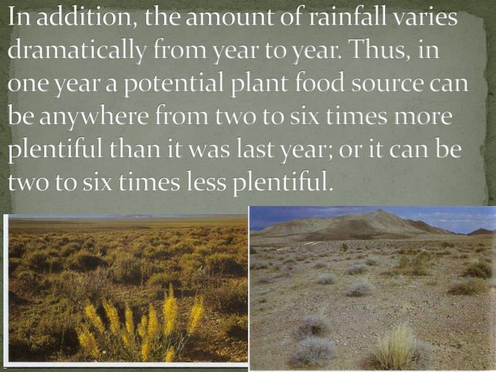 In addition, the amount of rainfall varies dramatically from year to year. Thus, in one year a potential plant food source can be anywhere from two to six times more plentiful than it was last year; or it can be two to six times less plentiful.